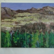 Valley, April 2015 16 in x 20 in oil