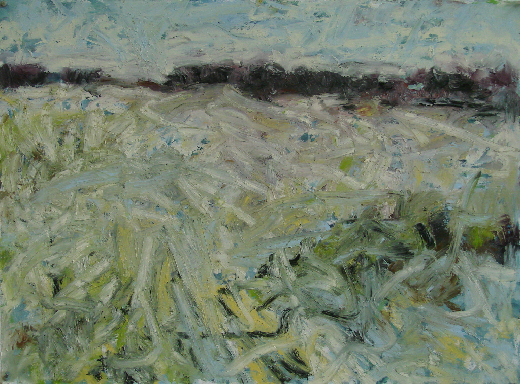 Early Spring 22 in x 30 in oil/Arches huile 2015