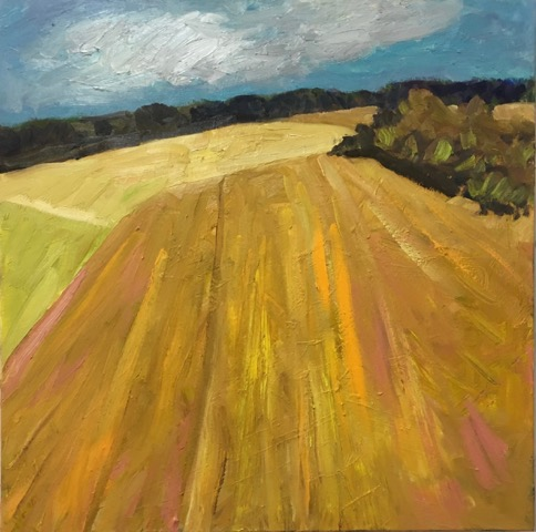 "Fields  30x30"" oil/canvas 2017"